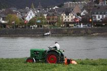 81 Trecker am Rhein/Tractor at the Rhein