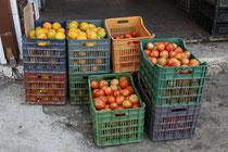 23 Früchte/Fruits