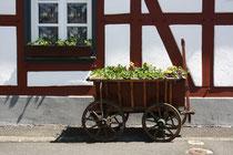 15 Bollerwagen/Cart