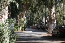 19 Straßen/Streets