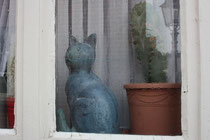 13 Katze im Fenster/Cat in a window