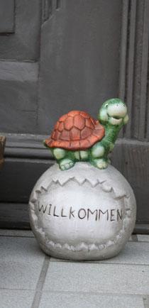 34 Schildkröte/Turtle