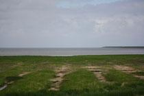 175 Nordsee+Landschaft/North sea+Landscape