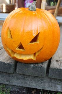 1 Halloweenkürbis/Halloween pumpkin