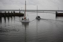 153 Segelboot/Sailing boat