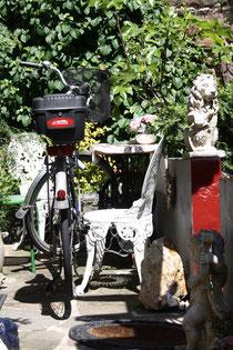 16 Fahrrad im Garten/Bicycle in a garden
