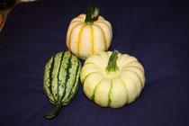 2 Kürbisse/Pumpkins