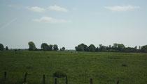 1 Landschaft/Landscape