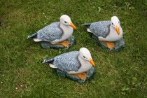 46 Seemöwen/Seagulls