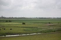 177 Landschaft/Landscape
