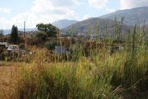 100 Landschaft/Landscape