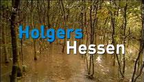Quelle:(© hr | geschichten aus hessen, 28.12.2014)                Beitrag Westwald ab Minute 6.55