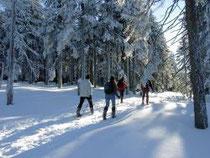 Schneeschuhwandern rund um Wegscheid
