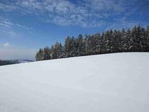 Der Winter im Mühlviertel