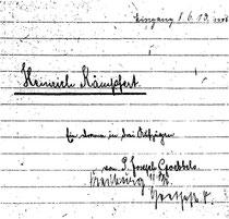 Karin Schröder/™Gigabuch Forschung/Originalhandschrift der Transkription Heft 13