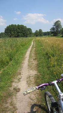 Radweg in seiner ursprünglichen Form!