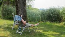 Entspannung pur unterm Baum