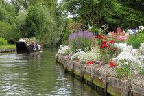 les Hortillonages jardin sur l'eau amiens somme picardie