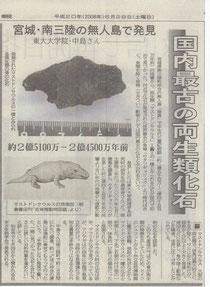 2008年6月中島さんが新たに発見した両生類、マストドンザウルスの化石