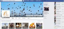 Facebook pagina PV De Luchtbode Assen