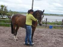 Bei der Biegung zur Person hin, muss sie für das Pferd Platz frei machen.