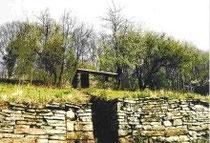 Pflege von Trockenmauern in Oberstenfeld