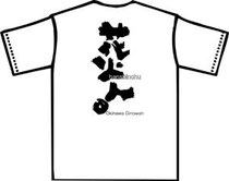 琉球海炎祭Tシャツデザイン画像
