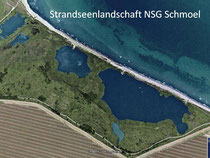 Luftbild NSG            Google 2009