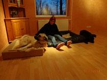 Kuschelplätze im Wohnzimmer-nicht nur für den Hund!