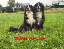 Jasper und Liam