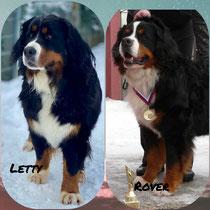 Letty( Electra ) wurde von Rover belegt
