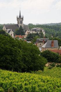 Vignobles de Valençay vue du château