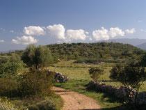 Der Weg nach Ecotopia
