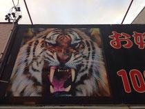 虎の看板ドーン!