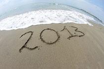 Adiós 2013, balance de un año...
