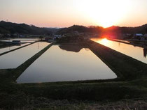 棚田の夕日 (道の駅頓原付近からの眺め)