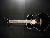 IBANEZ AC-50 BK ツリー・オブ・ライフ カレッジギターズ