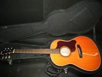 Stafford SAD-600 AM カレッジギターズ