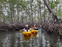 Tour de Kayaks