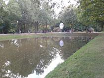 Uhr im Park