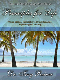 This book explains how to use biblical principles to build counseling plans.