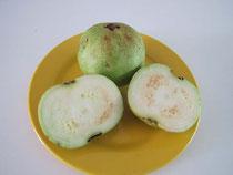 Apfelguave