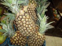 Ananas Perolera