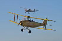 Bild der Tiger Moth