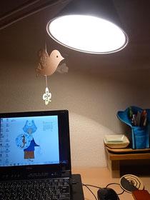 LEDから白熱電球に変更