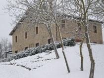 La Mela Rosa e la neve