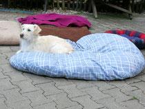 Da gab es von uns neue Bettchen