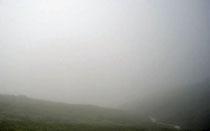 Nebel Alpen E5 Wiese Hügel