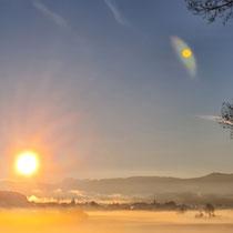 Mystische Morgenstimmung beim Lu Jong Yoga im Wald