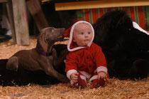 Babys 1st Christmas Photo